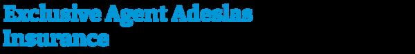 Exclusive Agent Adeslas Insurance