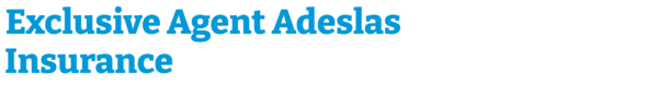 Exclusive Agent Adeslas Insurance